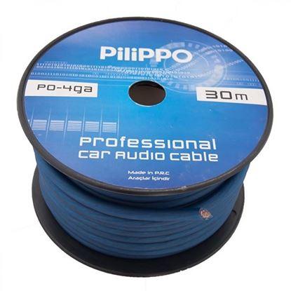 Pilippo PI-4GA 30 M Amfi Tesisat Güç Kablosu resmi